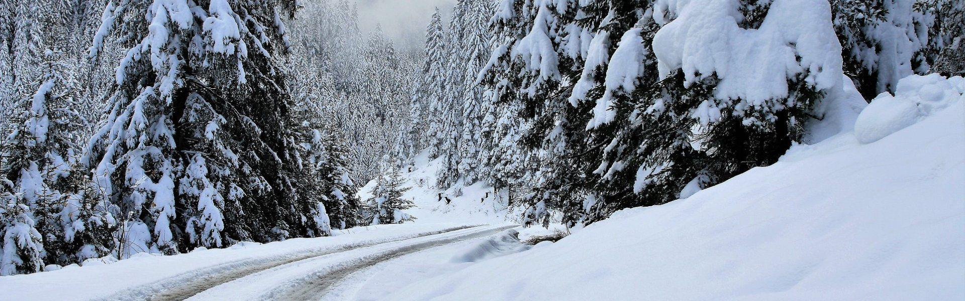 Sneeuwkettingen voor de Renault Megane