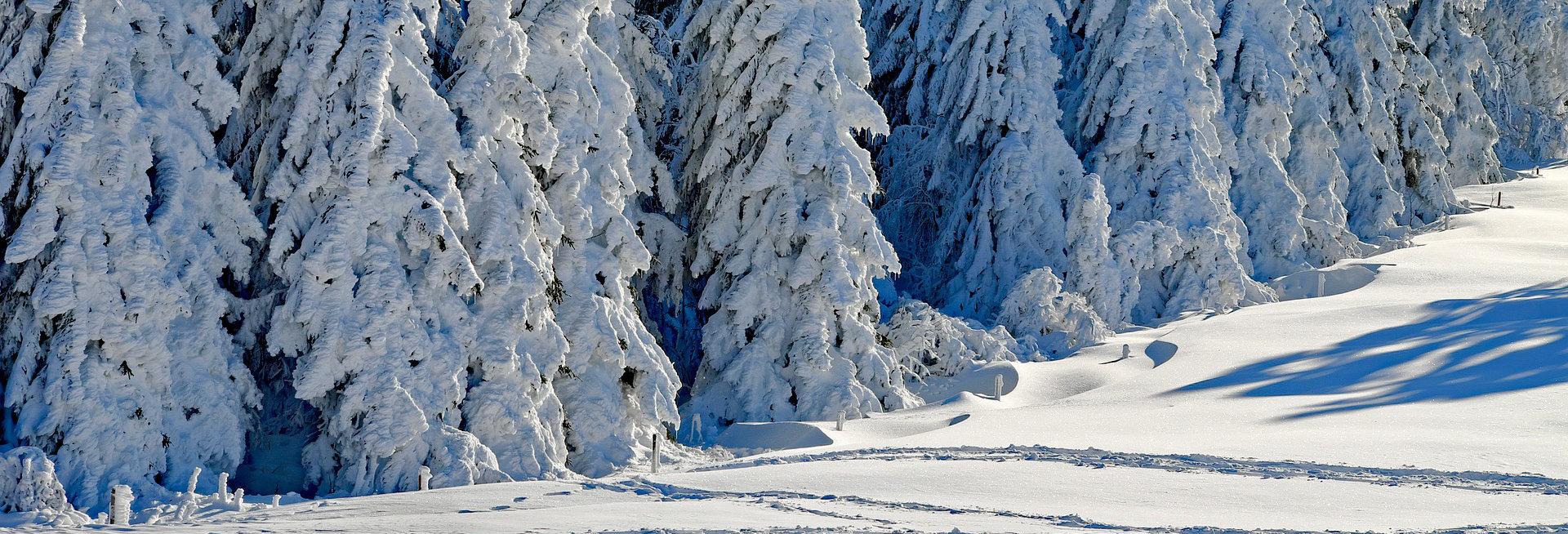 Sneeuwkettingen voor de Toyota Verso
