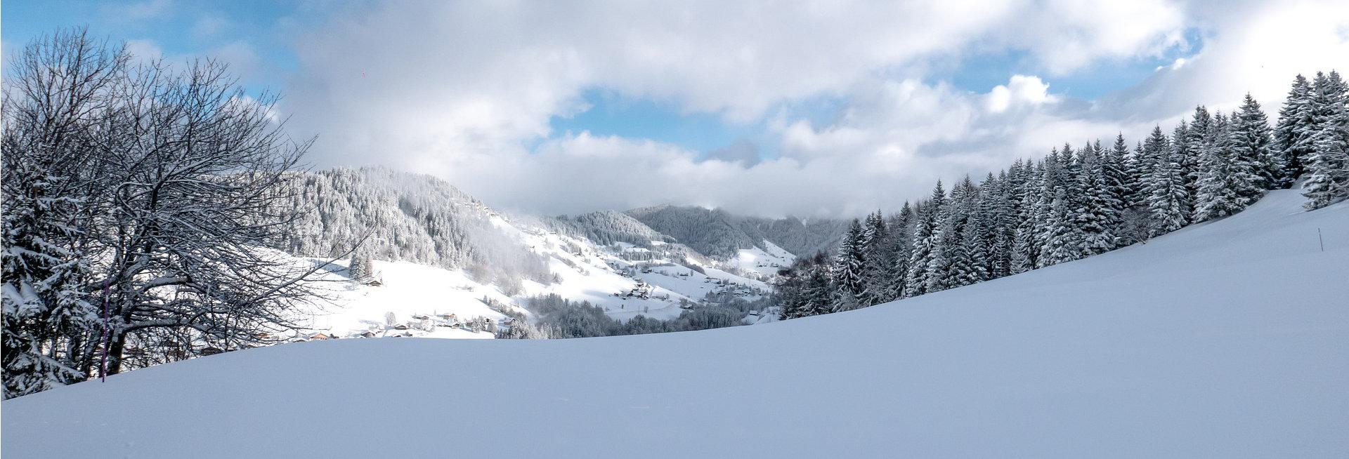Sneeuwkettingen voor de BMW X2