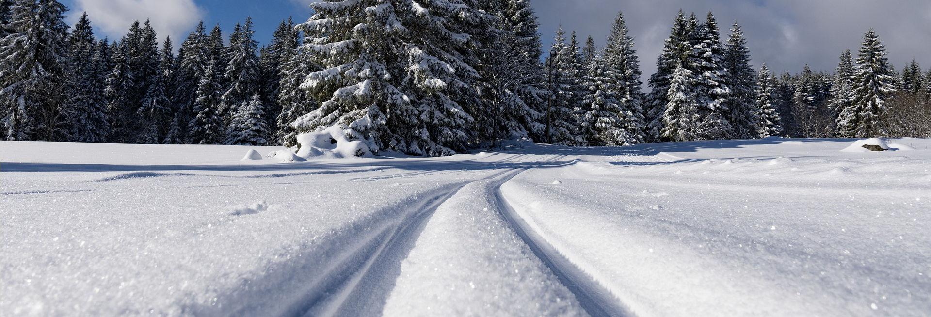Sneeuwkettingen voor de Volkswagen Multivan